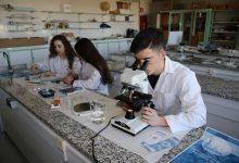 Photo of El proyecto del polen del IES Los Sauces se queda a las puertas de ganar los Premios de Investigación e Innovación