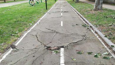 Photo of Se reparará el carril bici de Benavente, tras cinco años de abandono