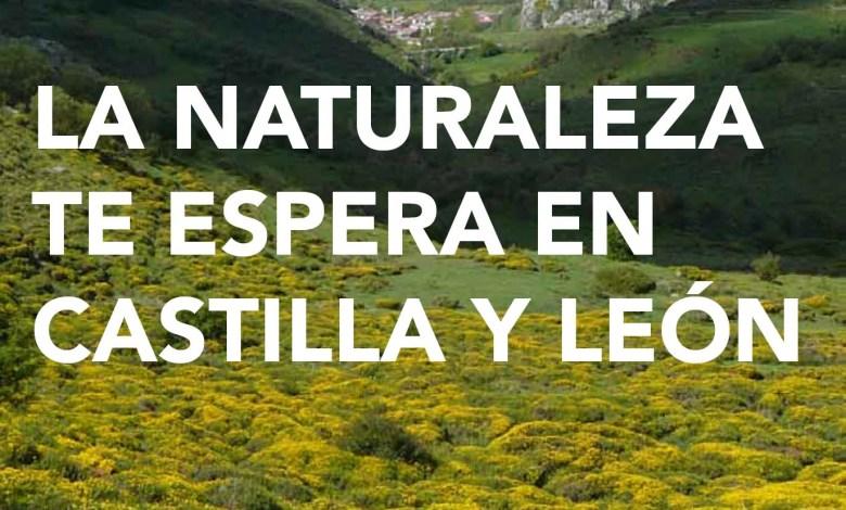 Photo of Castilla y León oferta la Red de Áreas Naturales Protegidas y de senderos y equipamientos de uso público ante la desescalada por el COVID-19