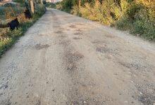 Photo of Piden la reparación del camino del Tamaral en Benavente