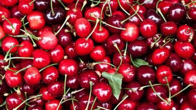 Photo of Correos lanza una nueva campaña especial en Benavente y Toro para el envío de cerezas