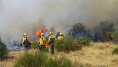 Photo of San Pedro de Ceque, Lanseros, Riego de Lomba y San Miguel de la Ribera sufren incendios forestales durante este lunes