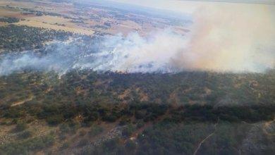 Photo of Declarado un incendio de nivel 1 en Morales de Rey por la cercanía al pueblo