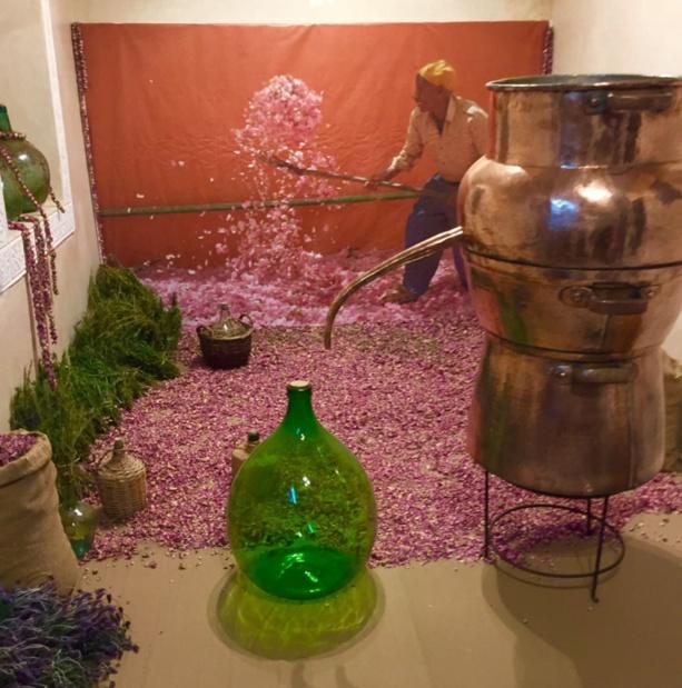 Le Musée du parfum