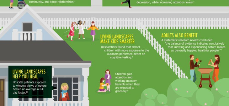 How greenery contributes to your health and wellbeing