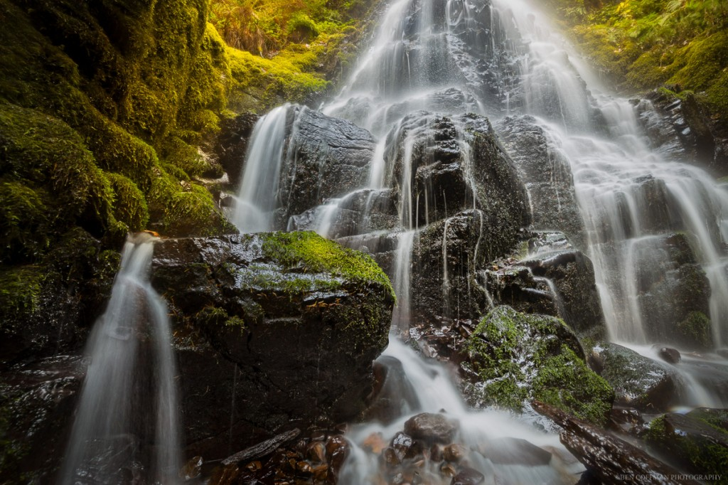Filtered sunlight from near the base of Fairy Falls, Columbia River Gorge.