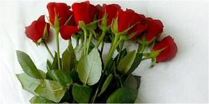 Bunga Mawar - Cara Menolak Santet