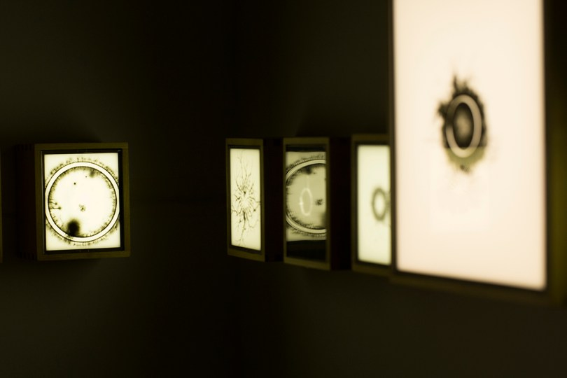 Sean O'connell circular edges - 29 monochrome and colour negatives and slides, backlit - various dimensions - 2016 - installation view