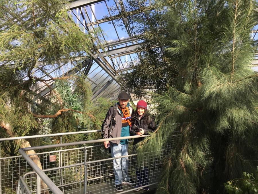 SBP In Netherlands 2018: Off to a Great Start with Tasty Crepes and Ancient Ferns