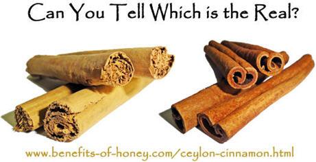 ceylon versus cassia cinnamon image