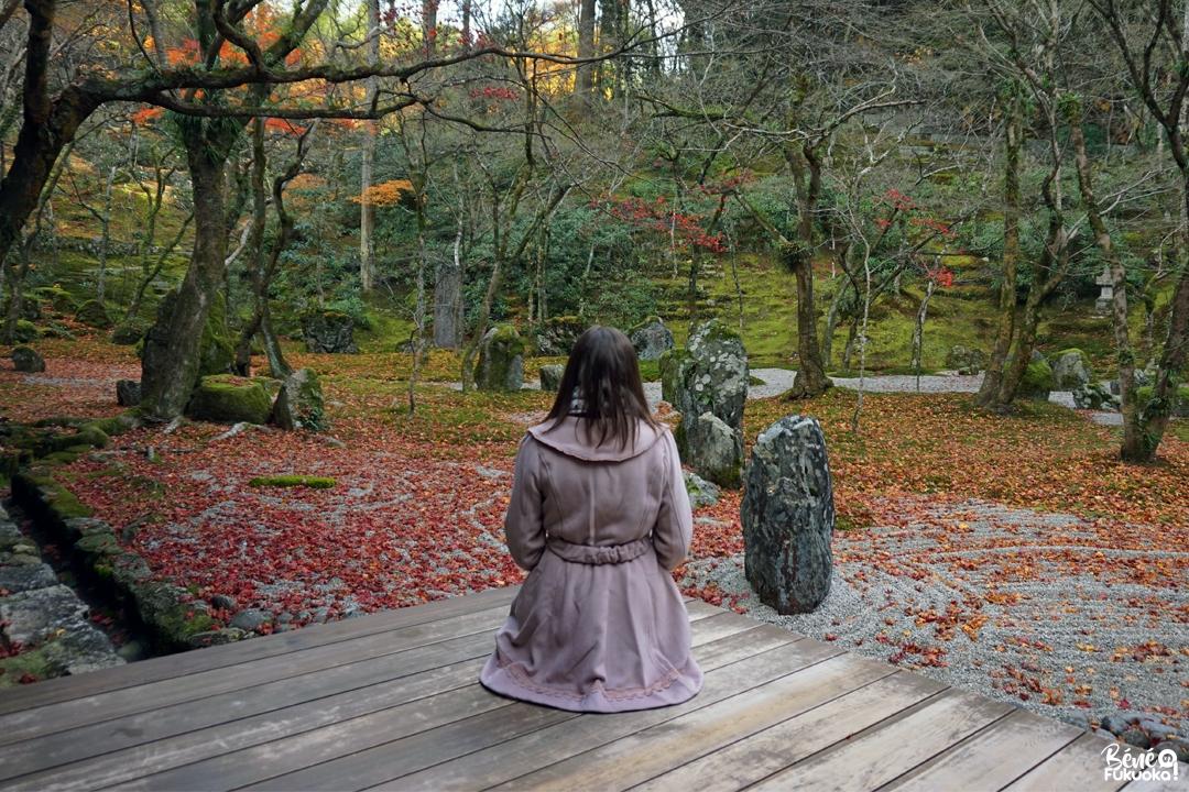 Profiter de l'automne tardif à Dazaifu