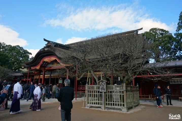 Le Dazaifu Tenman-gû, Dazaifu, Fukuoka