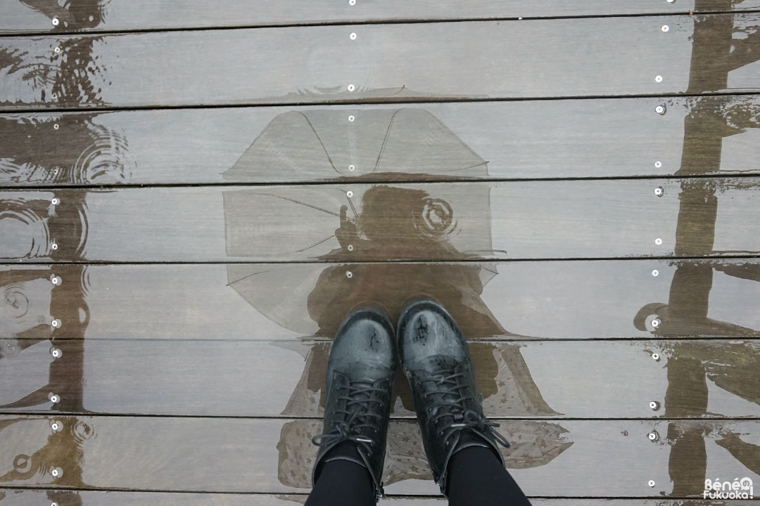 bene-reflection