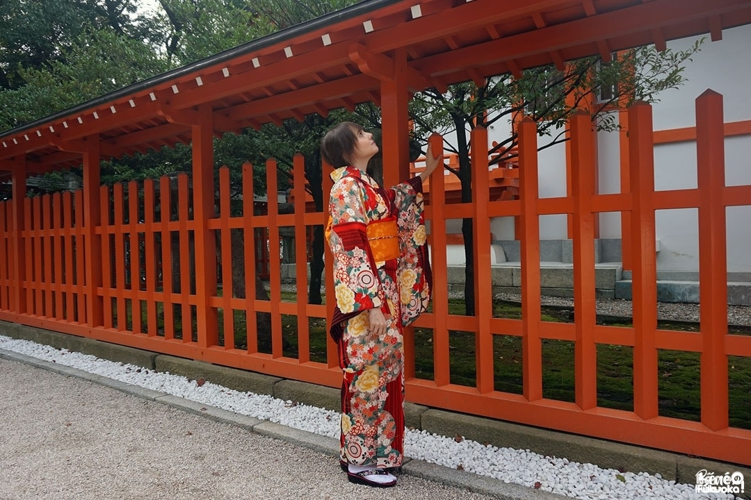 Fukuoka Kimono Walk #11 - Momiji Hachimangû