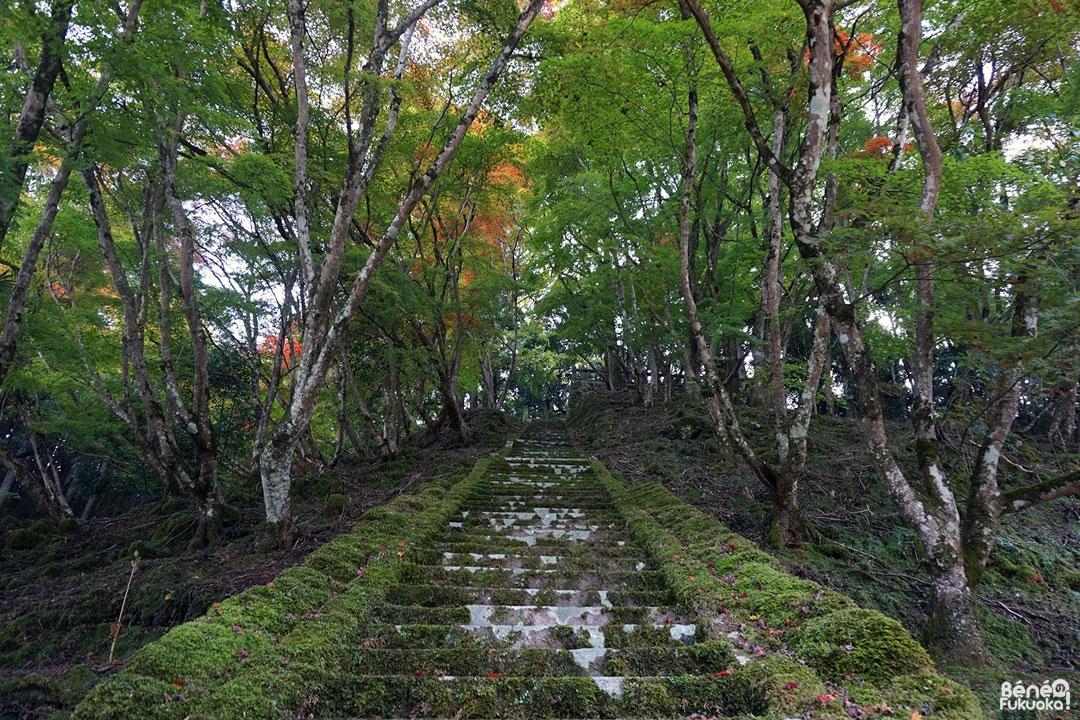 Sanctuaire Mitama, Yabakei