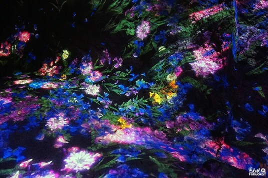 Exposition teamLab: A Forest Where Gods Live, jardin Mifuneyama Rakuen, Takeo