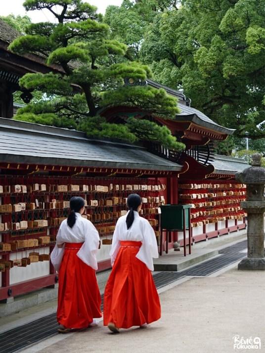 """Prêtresses """"miko"""" du sanctuaire Dazaifu Tenman-gû, Fukuoka"""
