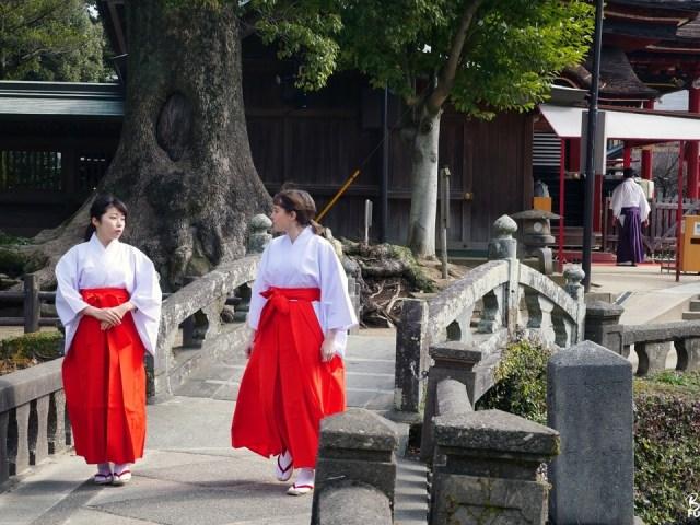 Prêtresse shintô (miko) d'un jour au sanctuaire Koinoki