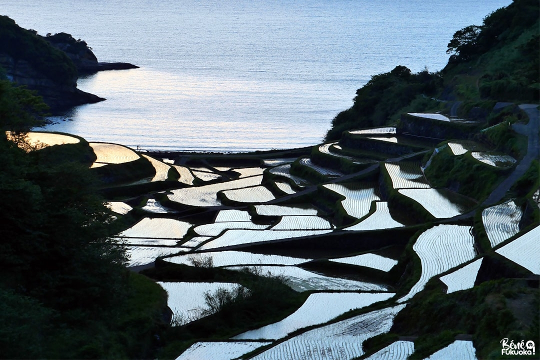 Rizières en terrasse Hamanoura, ville de Genkai, préfecture de Saga