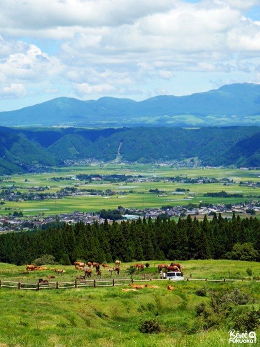 Panorama sur la caldeira du mont Aso, Kumamoto