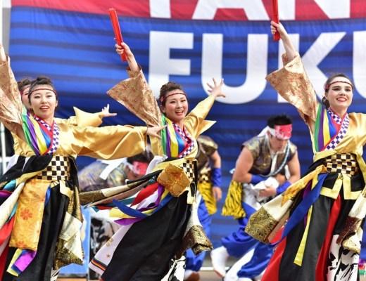 Sanoyoi Fire Carnival, festival de yosakoi de Kumamoto
