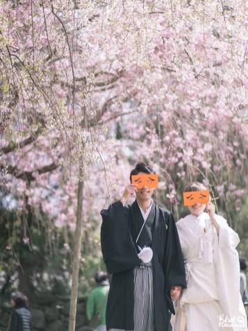 Photos de mariage sous les cerisiers, ville de Fukuoka, Japon