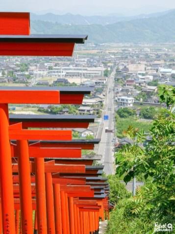 L'allée de torii du sanctuaire Ukiha Inari, ville d'Ukiha, préfecture de Fukuoka