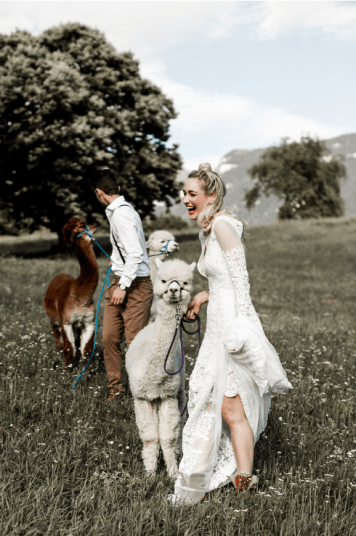 wedding dolomites