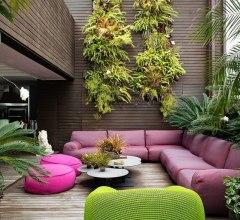 Patio and backyard design