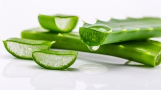 Aloevera for Exfoliating Skin/ Bio with Thysiamore.