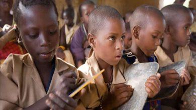 Photo of La fusion des classes dans l'enseignement primaire public pour améliorer les conditions de travail