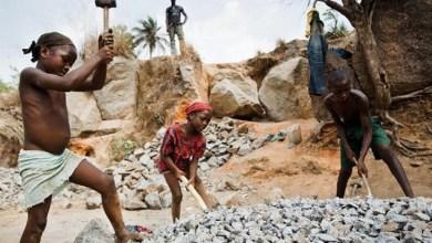 Photo of Le gouvernement intensifie la lutte contre les pires formes de travail des enfants