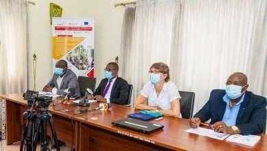 Photo of Développement de la filière Ananas : Enabel et le FNDA lance une convention de subside au profit des acteurs de la filière