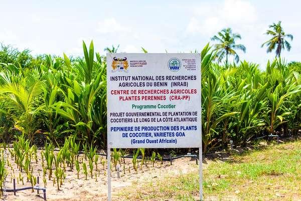 amenagement-de-la-zone-balneaire-:-les-pepinieres-de-production-de-plants-de-cocotiers-a-seme-podji-accueillent-les-ministres-dosssouhoui-et-tonato