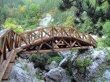 ponte_madeira