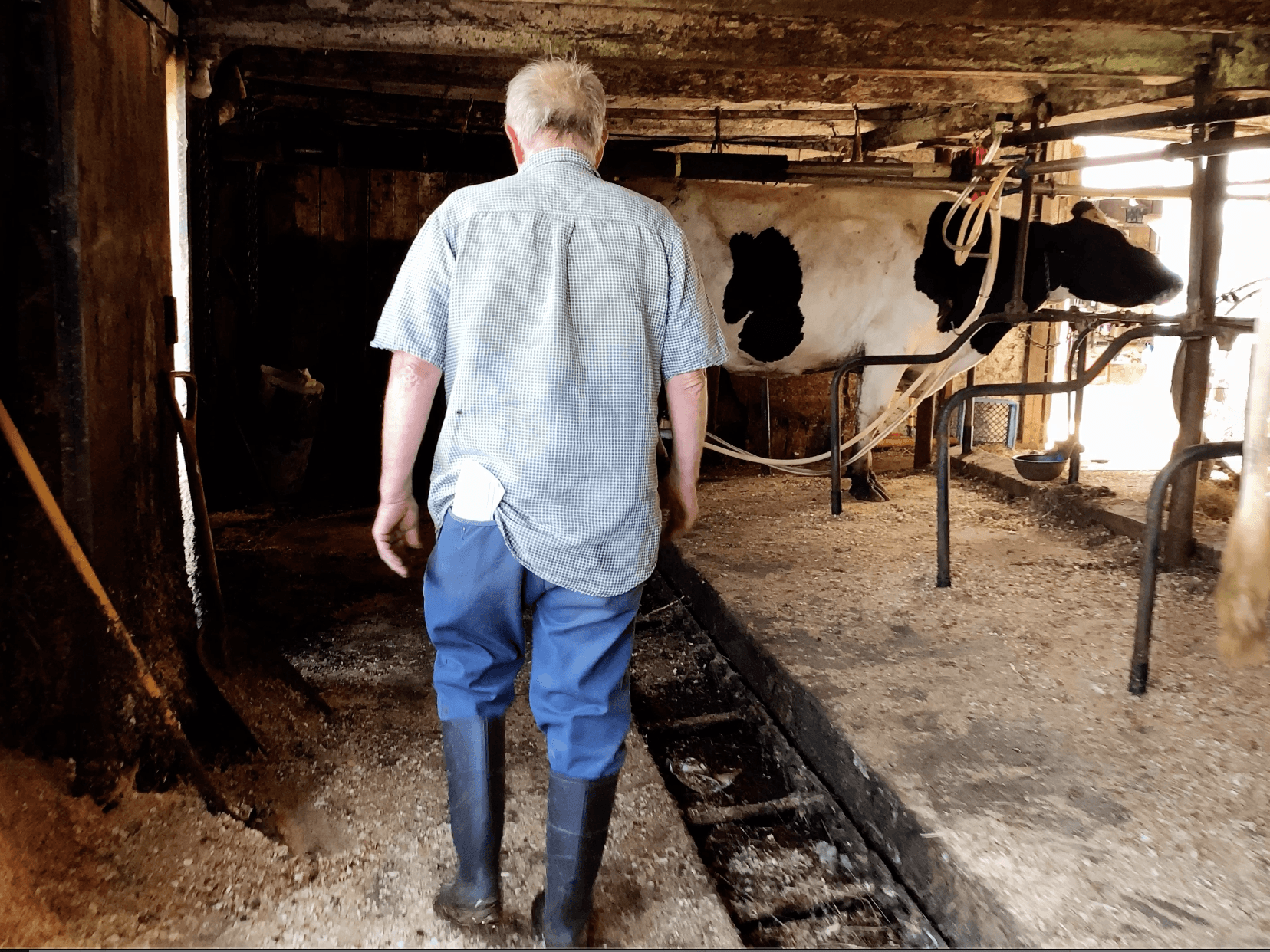 American Farmers: The Casualty of Donald Trump's Trade War