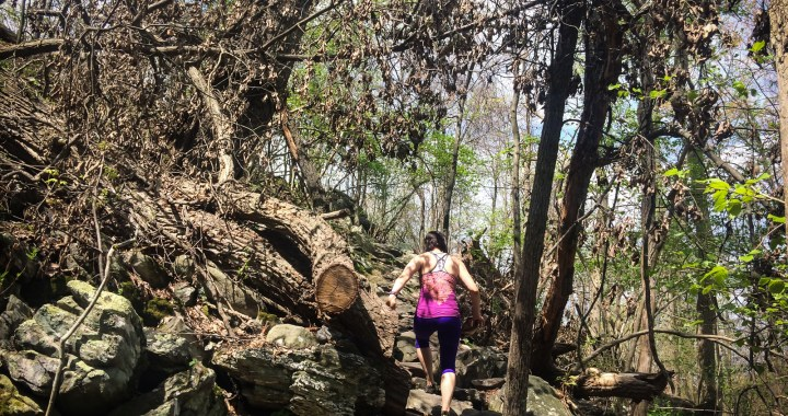 Kristen Hiking at Raven Rocks Blumont VA