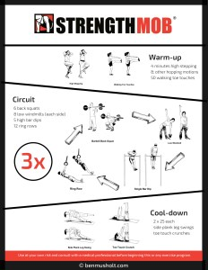Garage Gym Workout Ideas 006