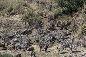 AOw-Benny-Rebel-Fotoreise-Kenia-Migration