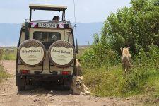 BAB-Benny-Rebel-Fotoreise-Tansania-Ngorongoro-Tourismus