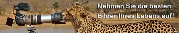 Benny-Rebel-TUI-Fotoreise-Fotosafari-Fotoworkshop-Kenia-Afrika-A6