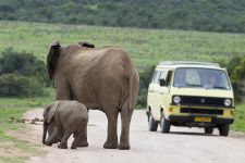 CC-Benny-Rebel-Fotoreise-Suedafrika-Tourismus