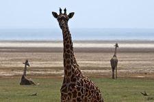 EJBenny-Rebel-Fotoreise-Tansania