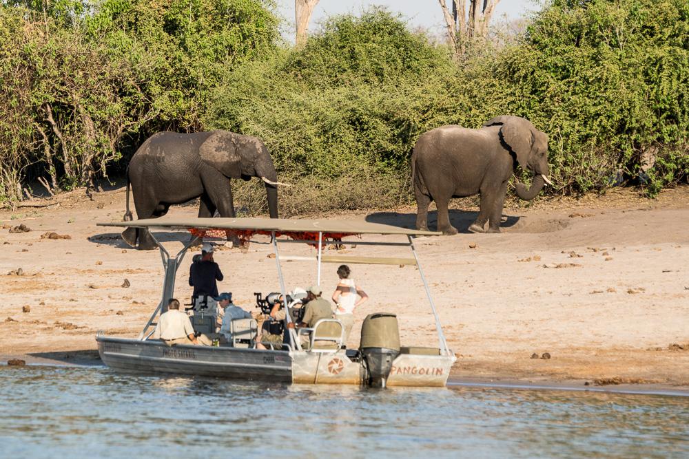 Botswana und Vic Falls (Simbabwe), Fotoreise