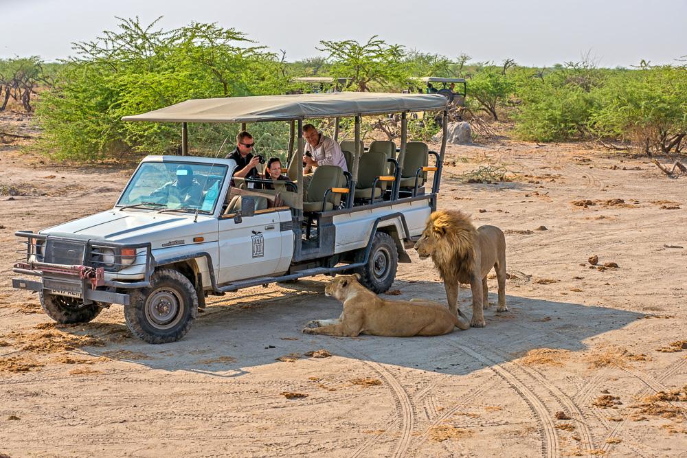 Simbabwe und Botswana, Fotosafari, Tierfotografie