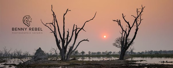 Fotoreise-Fotosafari-Botswana-Simbabwe-Afrika-001