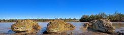 ZPB-Benny-Rebel-Fotoreise-Suedafrika-Krokodil