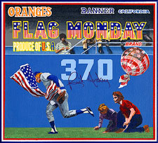 bb-sakoguchi-110-rick-monday-flag-burn-rescue-dodgers-cubs-roark