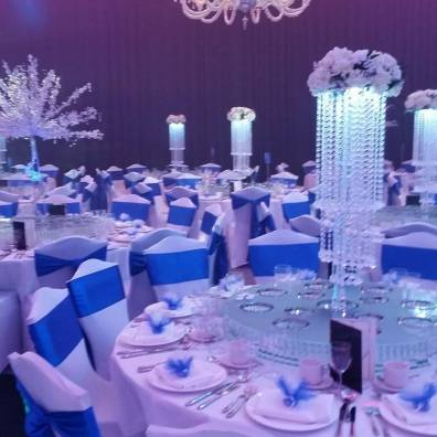 Room Decor white and blue ice kingdom winter wonderland theme