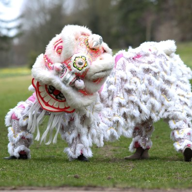 Traditional Chinese Dragon costume for Chinese New Year